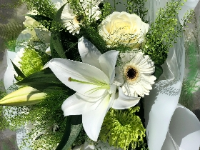 Cream White Green Hand Tied
